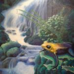 The waterfall and the frog